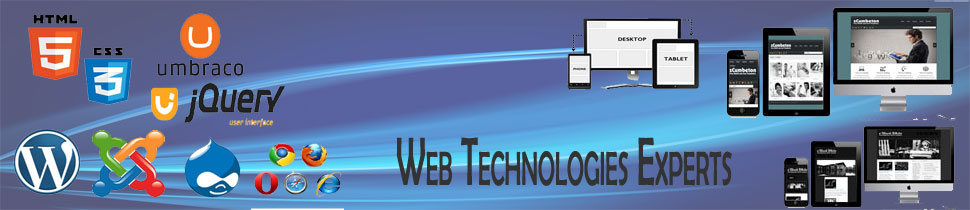 Web Technologies Experts